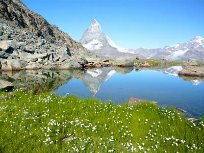 スイスのマッターホルンの山と湖と草原